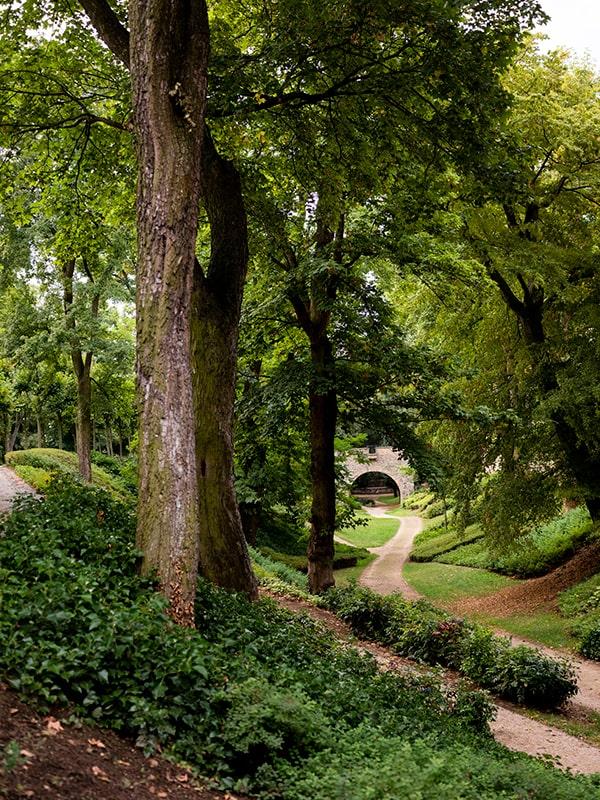 Bäume, Gras, sich schlängelnde Fußwege